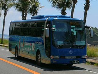 OKINAWA BUS LINES Ltd. Bus